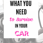 What You Need to Survive in Your Car
